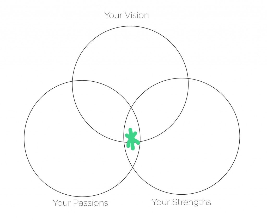 Passions_Strengths_Vision